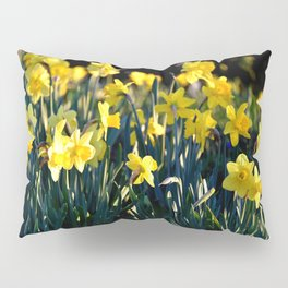 DAFFODILS IN THE LATE SPRING AFTERNOON LIGHT Pillow Sham