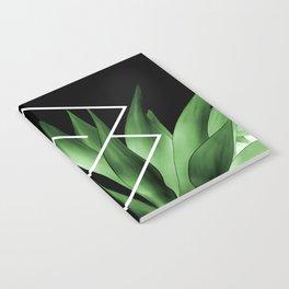 Agave geometrics III Notebook
