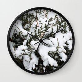 Cedar in the Snow Wall Clock