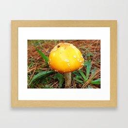 Smurf house Framed Art Print