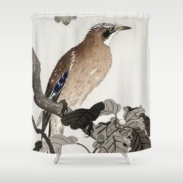 Jay sitting on Oak tree - Japanese vintage woodblock print Shower Curtain