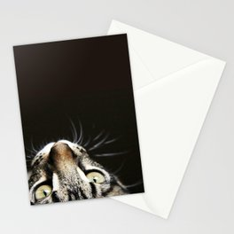 MILA, THE CAT Stationery Cards