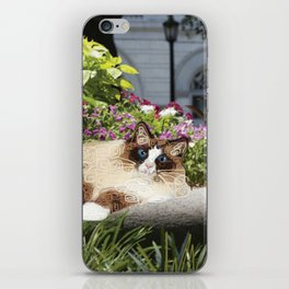 Sunning in Wright Square iPhone Skin