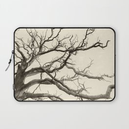 Tree Fingers of Perpetual Motion Laptop Sleeve