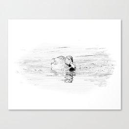 Duck Sketch Canvas Print