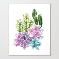 succulents Canvas Prints featuring Succulents by Megan Alcock