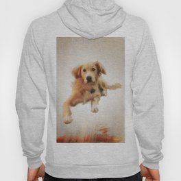 Finnegan Begin Again Hoody