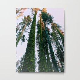 Cali Hike Metal Print