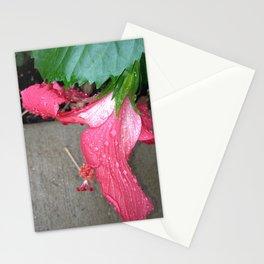 Pink Belle Stationery Cards