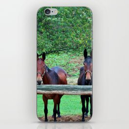 Free Us iPhone Skin