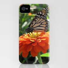 Papillon Means Butterfly Slim Case iPhone (4, 4s)