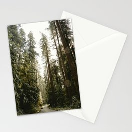 Redwood Forest Adventure III - Nature Photography Stationery Cards