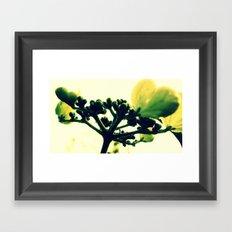 Glistening in the Morning Framed Art Print