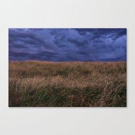 Stormy Field Canvas Print