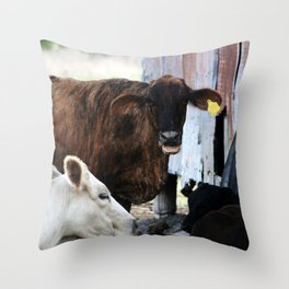 Gossips, the lot of them! Throw Pillow