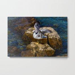 Adriatic Seagull  Metal Print