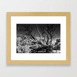 Dark Day Framed Art Print