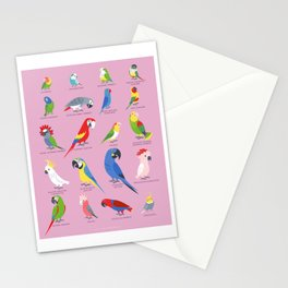 Parrots by Lili Chin Stationery Cards