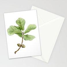 Water Oak Stationery Cards