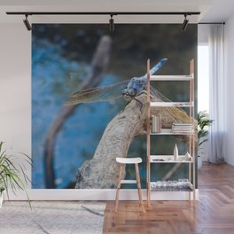 Dragonfly in blue Wall Mural