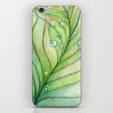 Green Watercolor Peacock Feather and Bubbles iPhone & iPod Skin