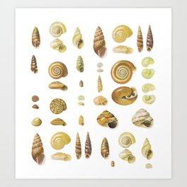 litle nature Art Print