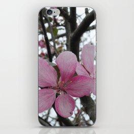 Crabapple Blossoms iPhone Skin