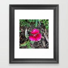 Flower#1 Framed Art Print