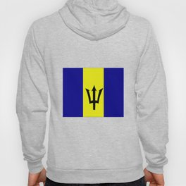 Flag of Barbados Hoody