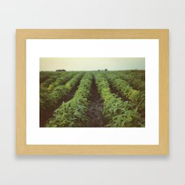 Iowa Landscape Framed Art Print