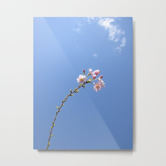 One of the Most Beautiful Things In This World Metal Print