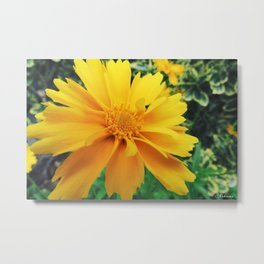 Yellow is the color of happy Metal Print