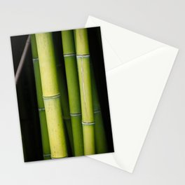 Green Bamboo Stationery Cards