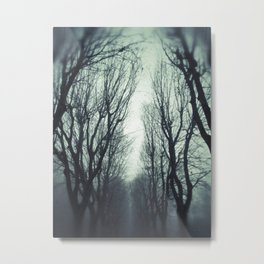 Avenue in the winter fog Metal Print