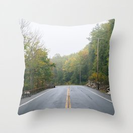 Leaving Minnewaska Throw Pillow
