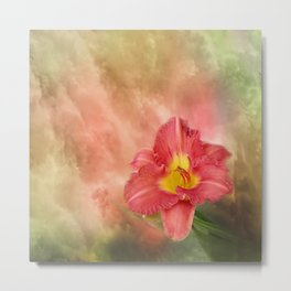 Beautiful day lily Metal Print