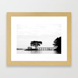 Arbor Vitae Framed Art Print