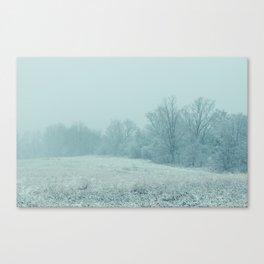 Union Winter 2 Canvas Print