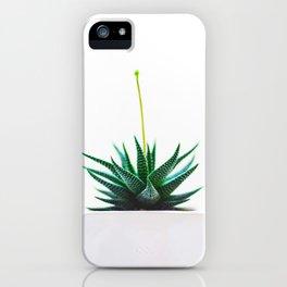Minimal Succulent Cactus iPhone Case