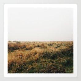 Fields Of Art Print