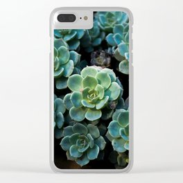 Succulent in the Light Clear iPhone Case