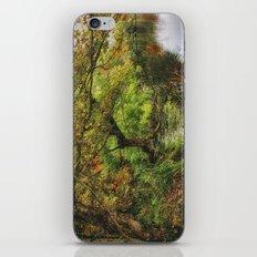 Along The Lake iPhone & iPod Skin