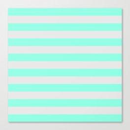 Mint Green & Gray Stripes Canvas Print