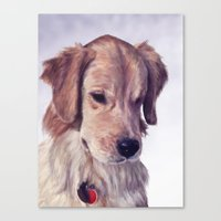 golden retriever Canvas Prints featuring Golden Retriever by Heather Amber