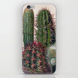 Vintage Cactus Print iPhone Skin