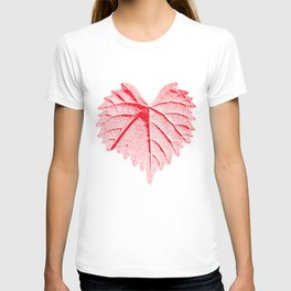 backlight leaf drawing, red T-shirt
