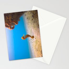 Tropical Seahorse Stationery Cards