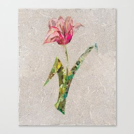 pink tulip on french newsprint background Canvas Print
