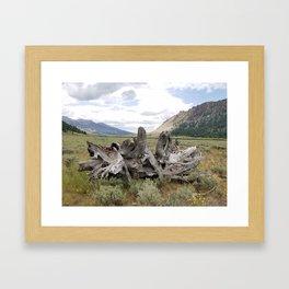 Wilderness Wood Sculpture Framed Art Print