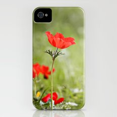 Anemones in the Sun Slim Case iPhone (4, 4s)